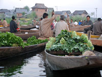 Floating Vegetable Market
