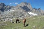 trekking-hiking-camping1